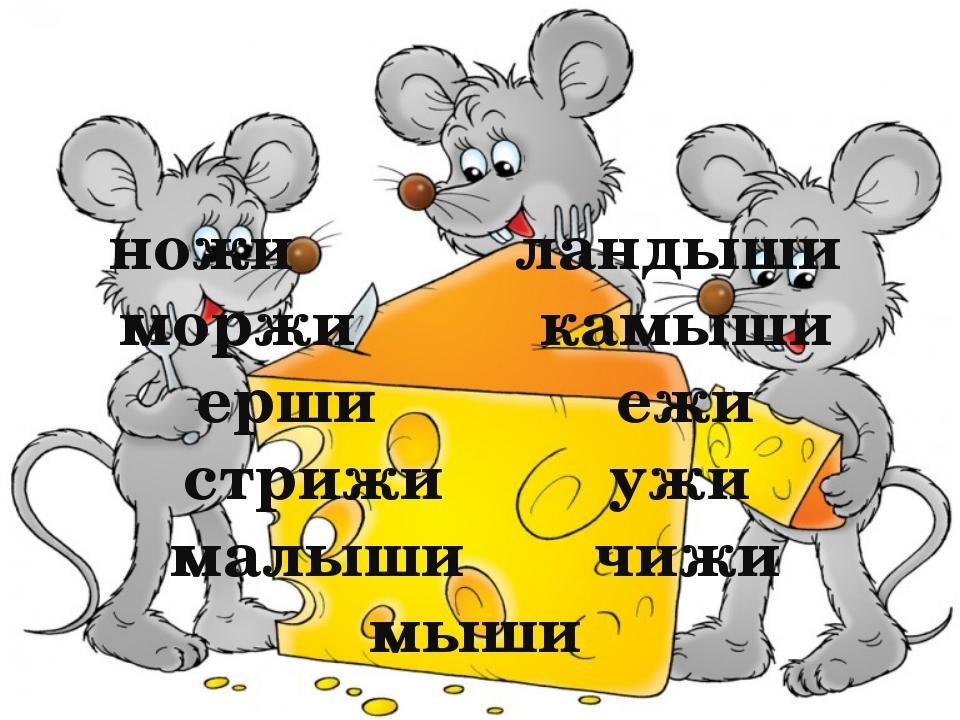 ножи ландыши моржи камыши ерши ежи стрижи ужи малыши чижи мыши