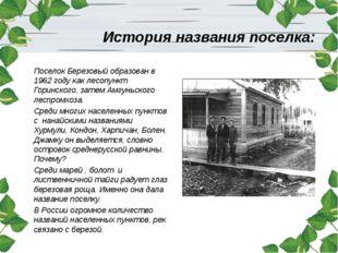 История названия поселка: Поселок Березовый образован в 1962 году как лесопун