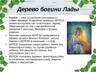 Дерево богини Лады Берёза — одно из наиболее почитаемых у славян деревьев. В