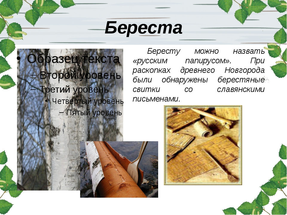Береста Бересту можно назвать «русским папирусом». При раскопках древнего Нов...