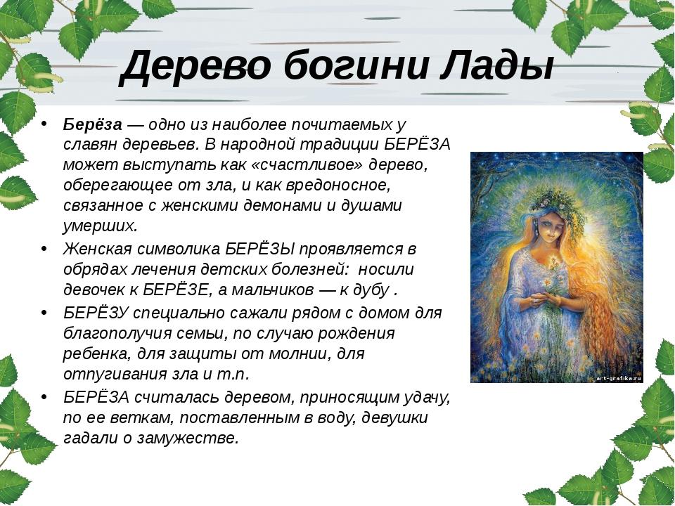 Дерево богини Лады Берёза — одно из наиболее почитаемых у славян деревьев. В...