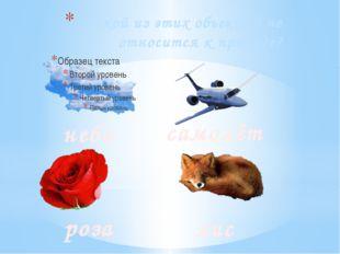 Какой из этих объектов не относится к природе? небо самолёт роза лиса