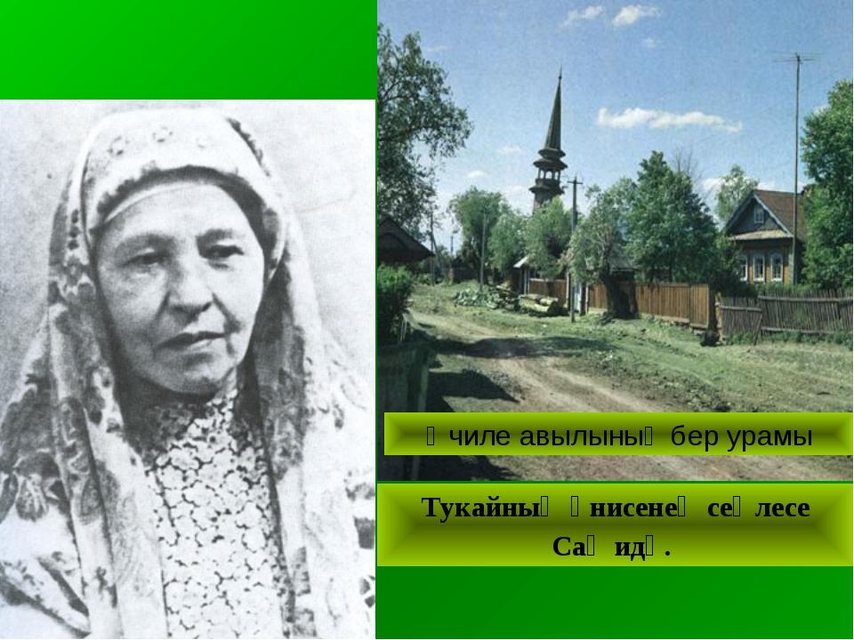 Өчиле авылының бер урамы Тукайның әнисенең сеңлесе Саҗидә.
