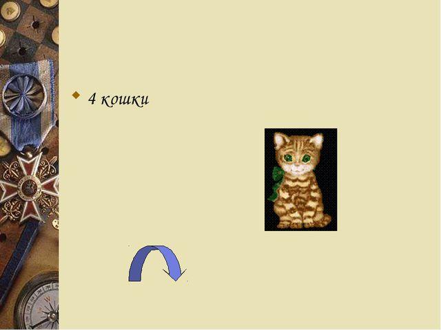4 кошки