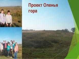 Руководитель: Березен П.А. Выполняли: Погодина Люба Калишанин Дмитрий Безрод