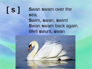 Swan swam over the sea. Swim, swan, swim! Swan swam back again. Well swum, sw