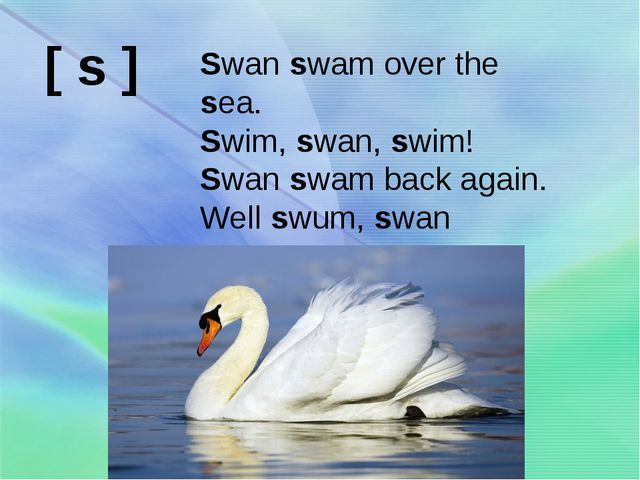 Swan swam over the sea. Swim, swan, swim! Swan swam back again. Well swum, sw...