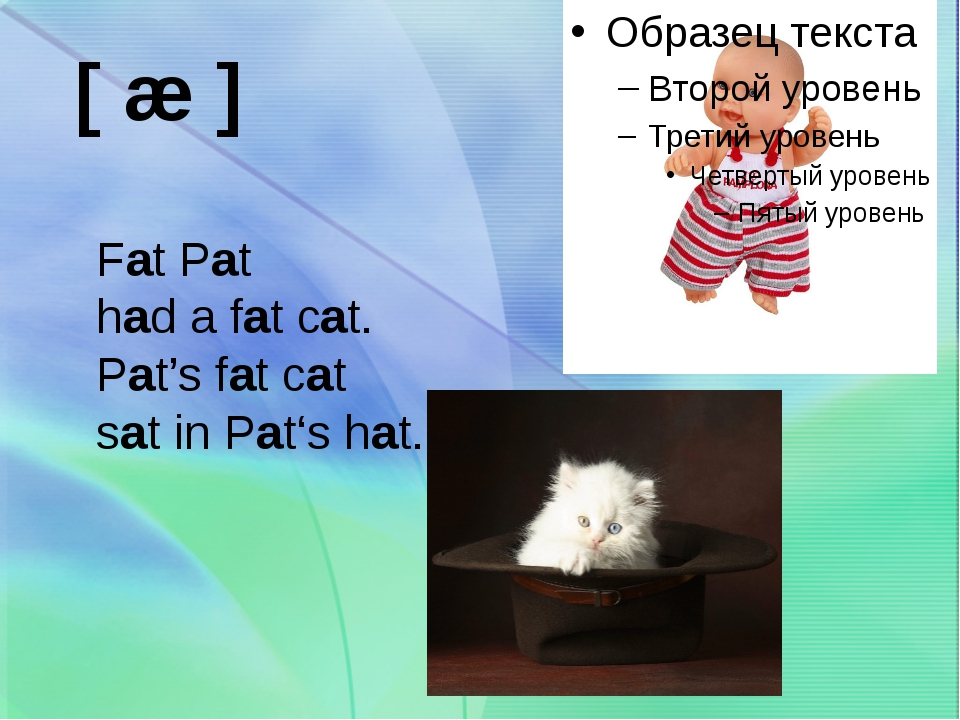 [ æ ] Fat Pat had a fat cat. Pat's fat cat sat in Pat's hat.