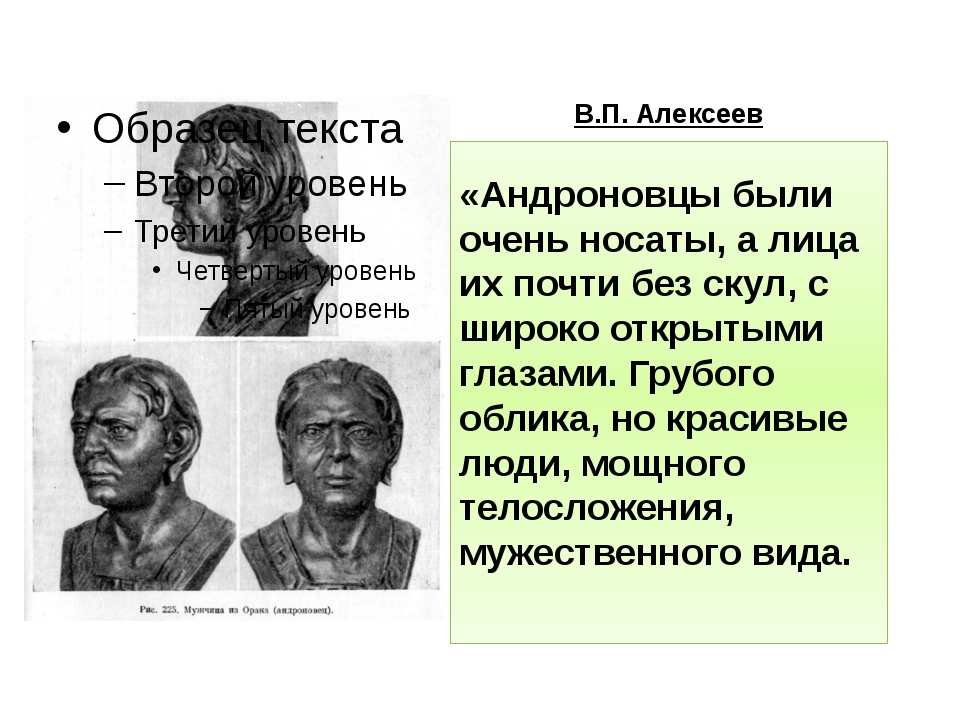 В.П. Алексеев «Андроновцы были очень носаты, а лица их почти без скул, с широ...
