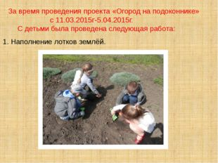 За время проведения проекта «Огород на подоконнике» с 11.03.2015г-5.04.2015г