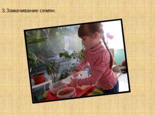 3.Замачивание семян.