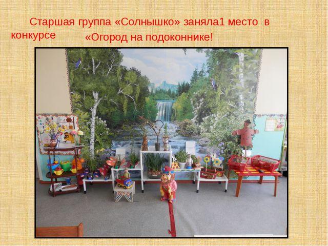 Старшая группа «Солнышко» заняла1 место в конкурсе «Огород на подоконнике!