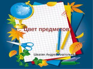 Цвет предметов Швагин Андрей Анатольевич