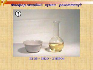 ЕСЕП: Ғалымдар есептеулері бойынша адам денесінің салмағының 1 пайызы фосфор