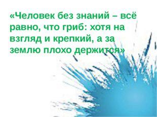 «Человек без знаний – всё равно, что гриб: хотя на взгляд и крепкий, а за зем