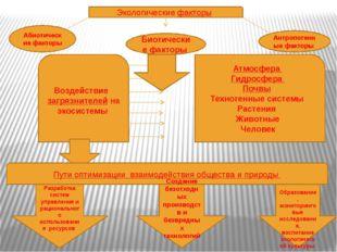 Экологические факторы Абиотические факторы Биотические факторы Антропогенные
