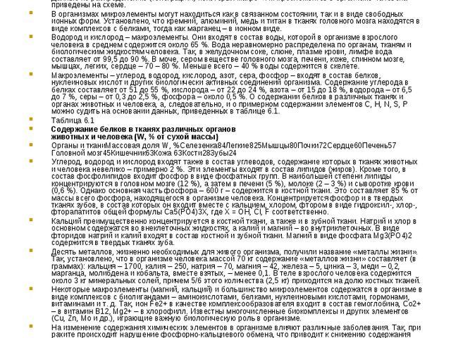 Приложение №1 Топография важнейших биогенных элементов в организме человека О...