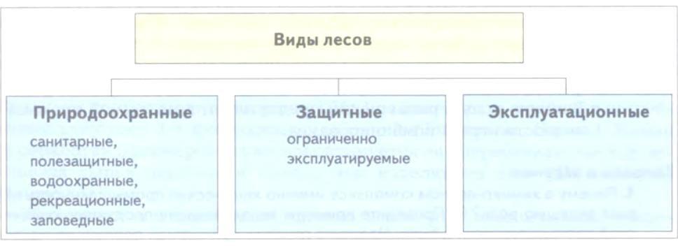 hello_html_m2b97daf6.jpg