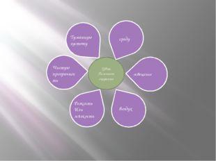 Цвет Помогает ощутить среду освещение воздух Резкость Или мягкость Чистую про