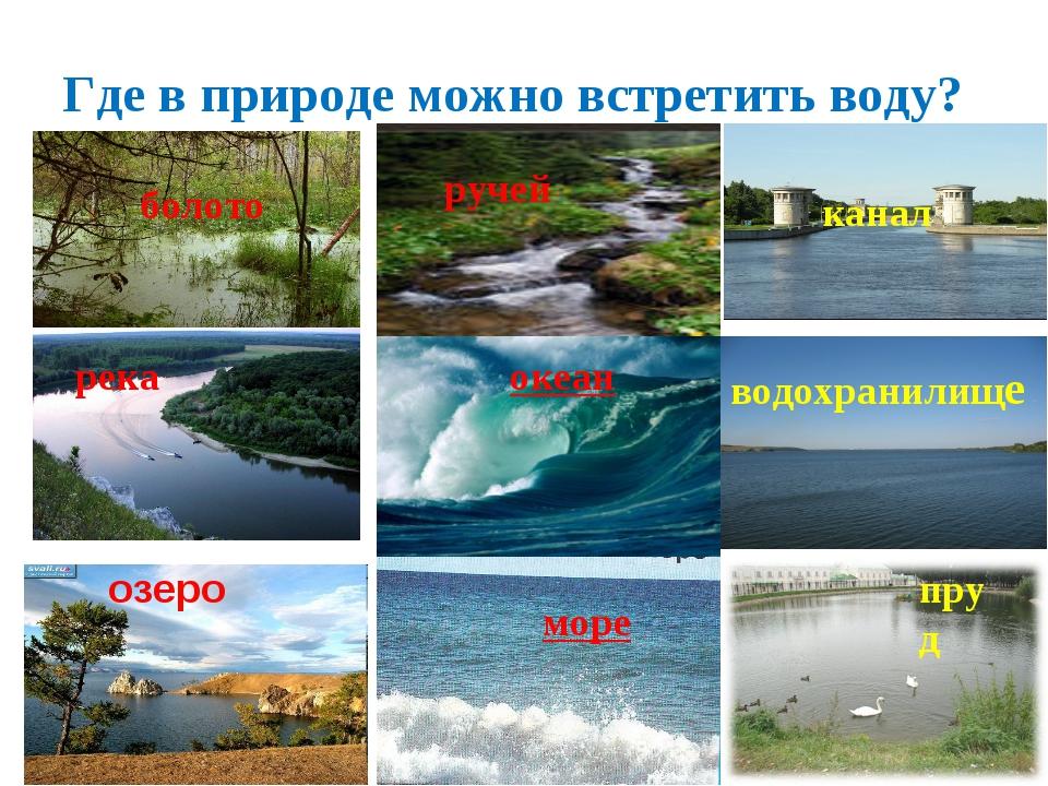 Где в природе можно встретить воду? океан пруд водохранилище море болото кана...