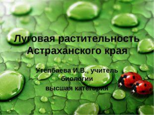 Луговая растительность Астраханского края Утепбаева И.В., учитель биологии вы