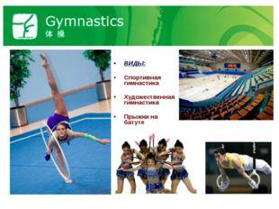 ВИДЫ: Спортивная гимнастика Художественная гимнастика Прыжки на батуте