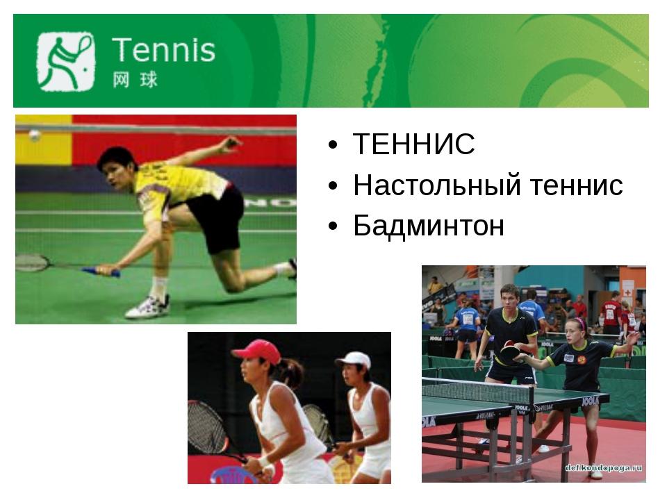 ТЕННИС Настольный теннис Бадминтон