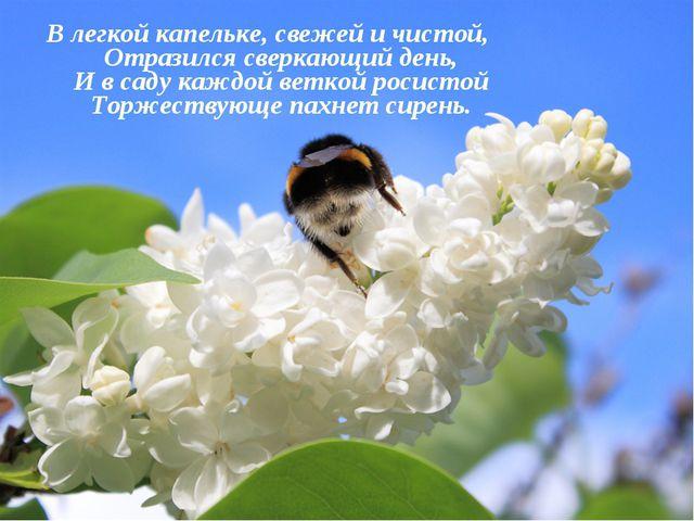 В легкой капельке, свежей и чистой, Отразился сверкающий день, И в саду каждо...