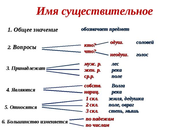 Имя существительное 1. Общее значение обозначает предмет 2. Вопросы кто? что?...