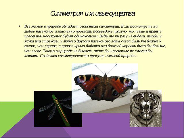 Симметрия и живые существа Все живое в природе обладает свойством симметрии....