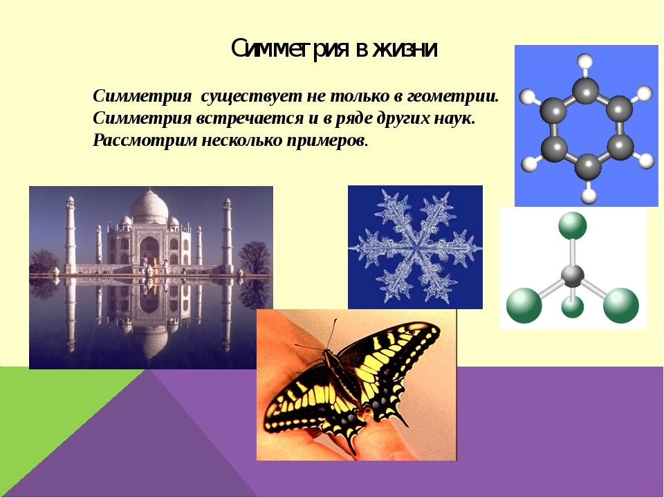 Симметрия в жизни Симметрия существует не только в геометрии. Симметрия встре...