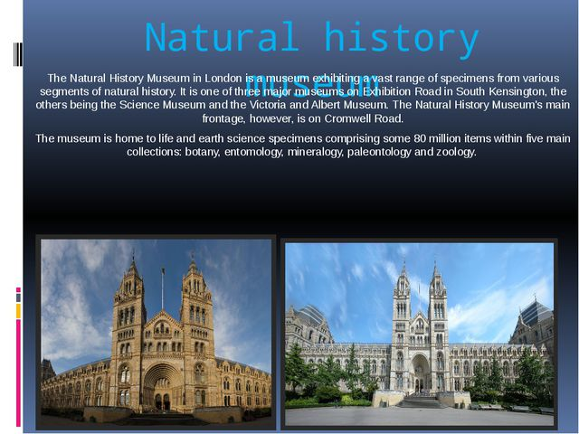 Natural history museum The Natural History Museum in London is a museum exhib...