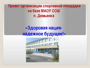 Проект организации спортивной площадки на базе МАОУ СОШ п. Демьянка «Здоровая