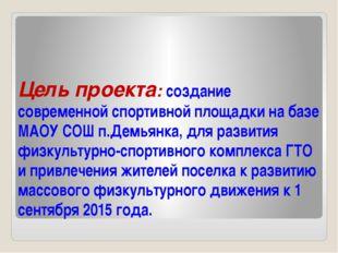 Цель проекта: создание современной спортивной площадки на базе МАОУ СОШ п.Дем