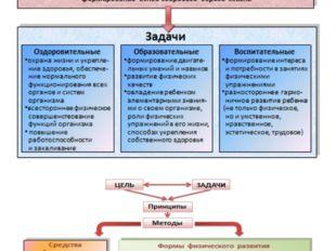 * Образовательная область «Физическое развитие» реализует следующие цели и за