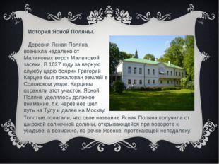 История Ясной Поляны. Деревня Ясная Поляна возникла недалеко от Малиновых вор