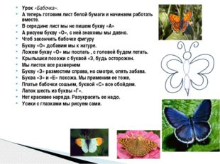 Урок «Бабочка». А теперь готовим лист белой бумаги и начинаем работать вместе