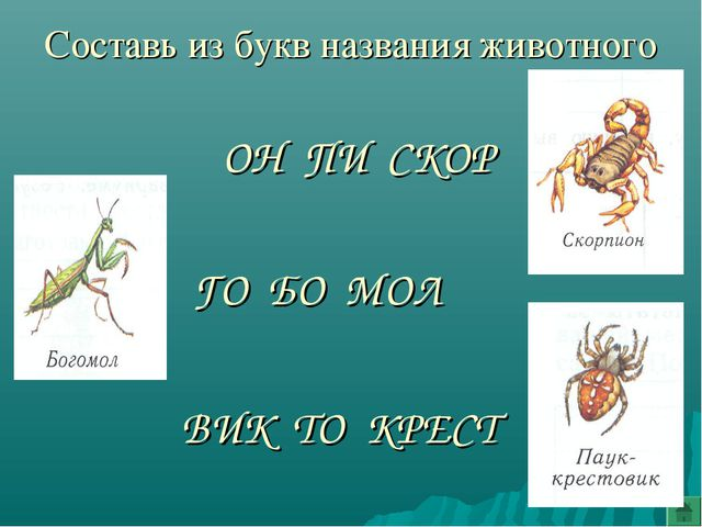 Составь из букв названия животного ГО БО МОЛ ОН ПИ СКОР ВИК ТО КРЕСТ