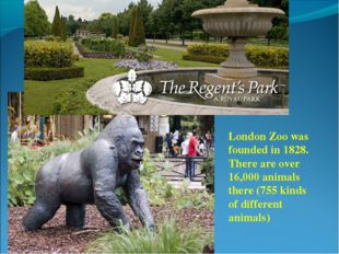 London Zoo was founded in 1828. There are over 16,000 animals there (755 kind