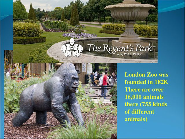 London Zoo was founded in 1828. There are over 16,000 animals there (755 kind...