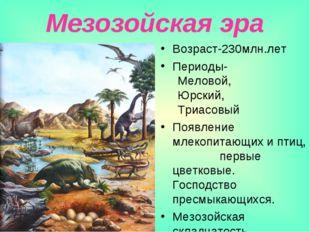 Мезозойская эра Возраст-230млн.лет Периоды- Меловой, Юрский, Триасовый Появле