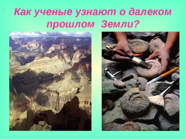 Как ученые узнают о далеком прошлом Земли?