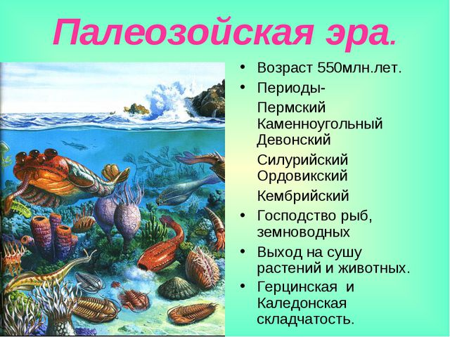 Палеозойская эра. Возраст 550млн.лет. Периоды- Пермский Каменноугольный Девон...