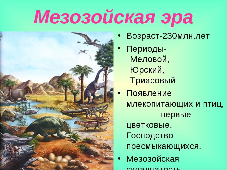 Мезозойская эра Возраст-230млн.лет Периоды- Меловой, Юрский, Триасовый Появле...