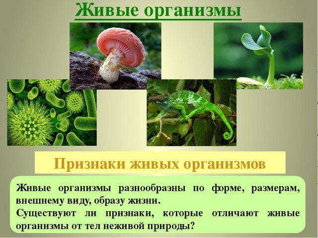 Живые организмы Признаки живых организмов Живые организмы разнообразны по фор...