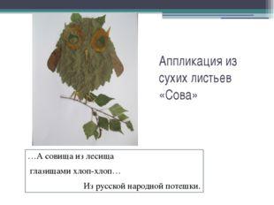 Аппликация из сухих листьев «Сова» …А совища из лесища глазищами хлоп-хлоп… И