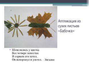 Аппликация из сухих листьев «Бабочка» Шевелились у цветка Все четыре лепестка