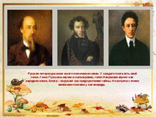 Русская литература знает много поэтических имен. У каждого поэта есть свой го