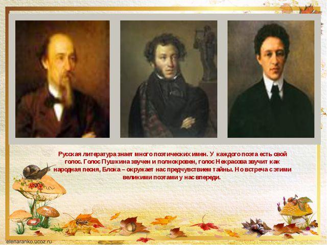 Русская литература знает много поэтических имен. У каждого поэта есть свой го...