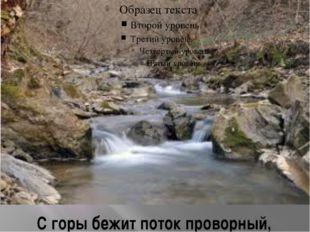 С горы бежит поток проворный,